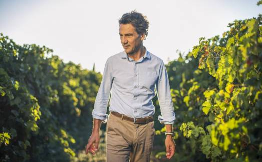 Languedoc wine producer - Jean-Claude Mas, commercial director